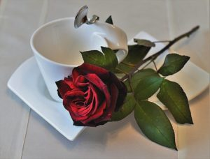 skodelice za belo kavo