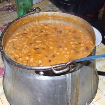 Pasulj – kako skuhamo dober pasulj?